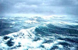 La sfida di Greenpeace per salvare gli oceani