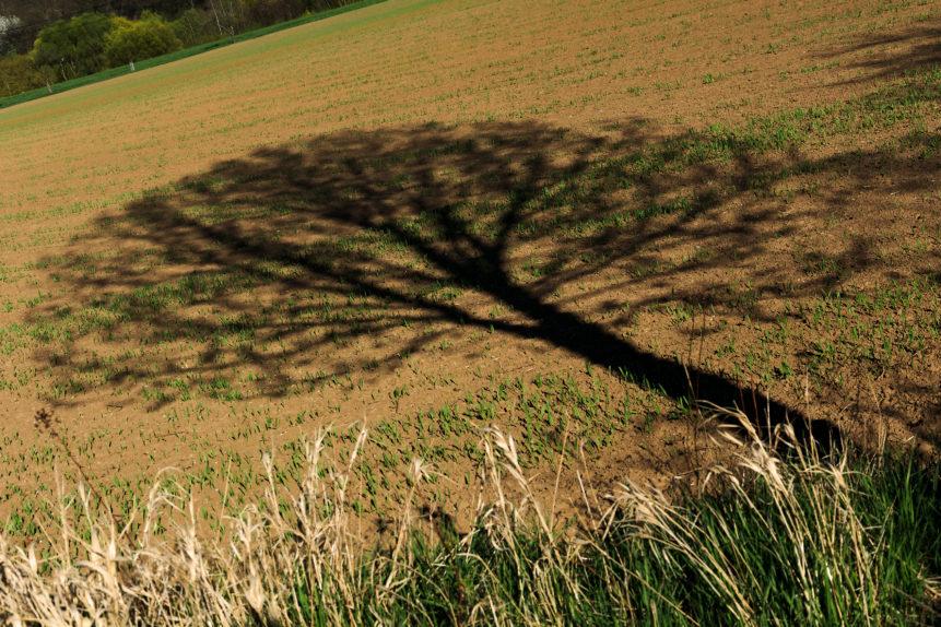 Overshoot day. L'Europa ha già consumato il budget annuale di risorse naturali