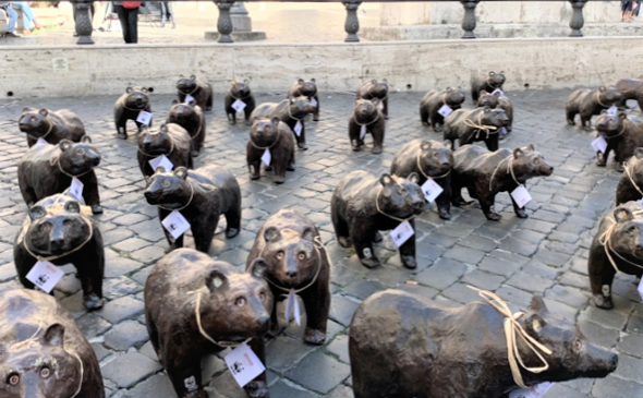 Salviamo gli Orsi Marsicani. Il Wwf in piazza Montecitorio