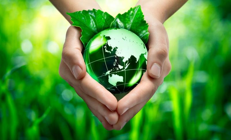 School4Life. Insieme per un futuro sostenibile