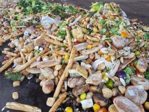 Gettiamo cinque euro di cibo a settimana nella spazzatura