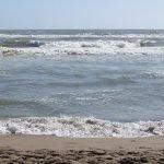 Clean up the Med. Puliamo il mare dalla plastica